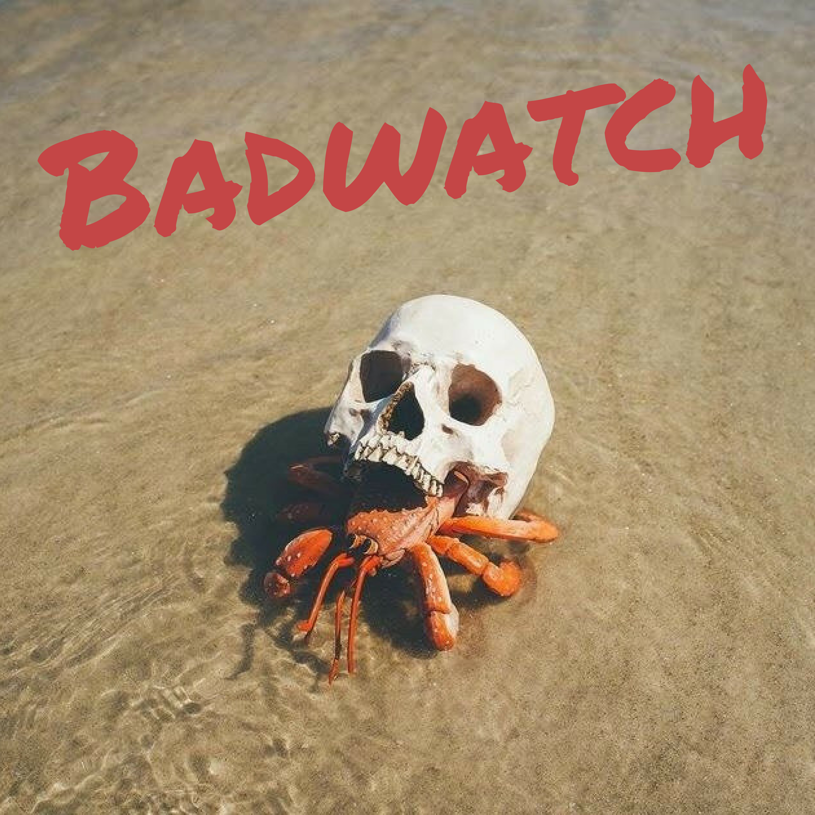 badwatch-logo.png